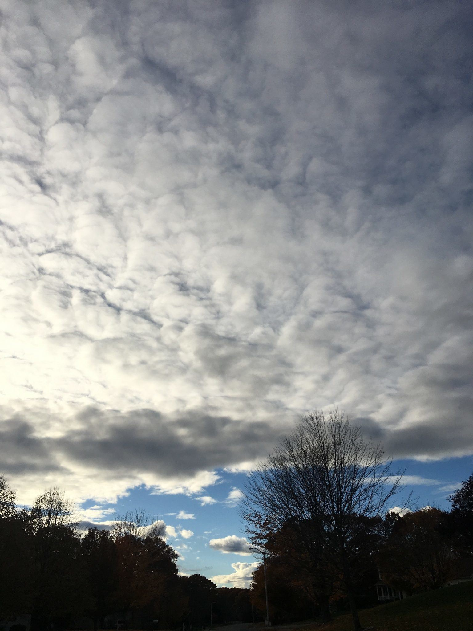 Clouds - with white/grey texturevatar