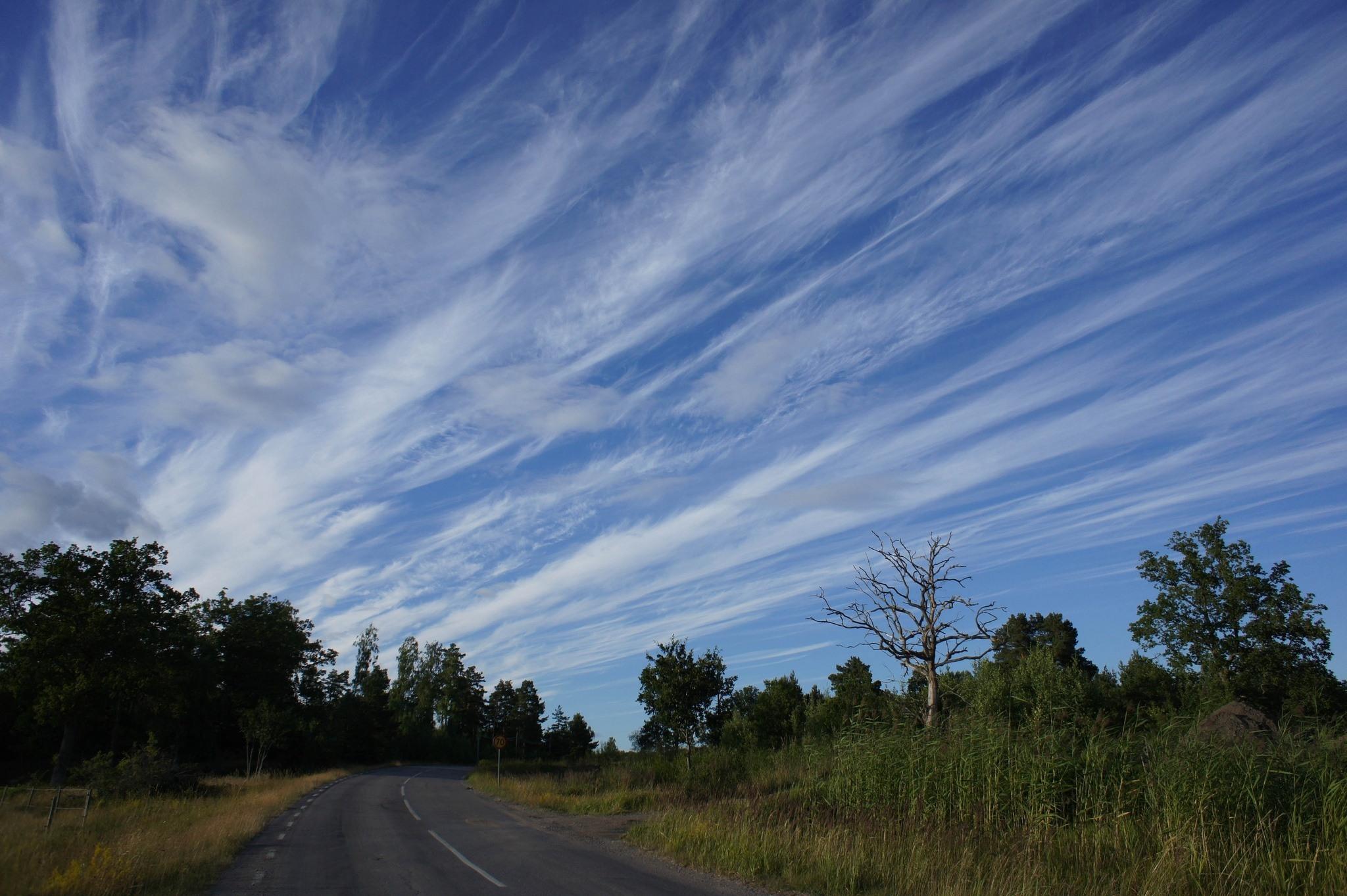 Cirrus clouds - Sweden