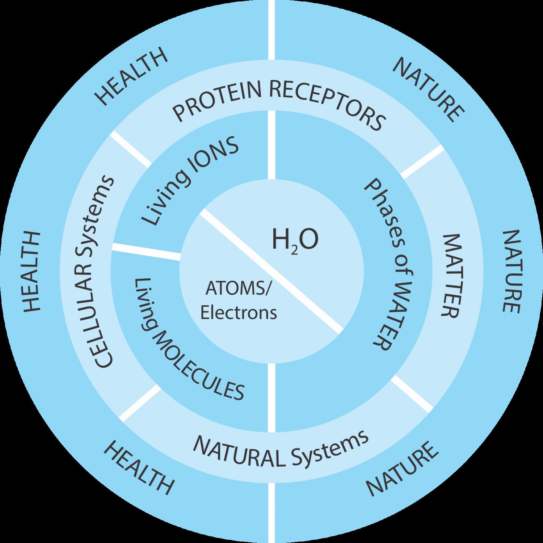 Life's Chemistry Press